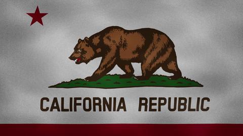 California dense flag fabric wavers, background loop Animation