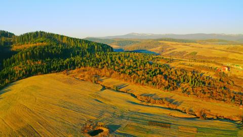 drone flies above highlands in daytime ライブ動画