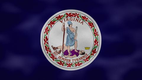 Virginia dense flag fabric wavers, background loop Animation