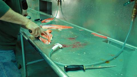 salmon cleaning sink Valdez Alaska P HD 8175 Footage