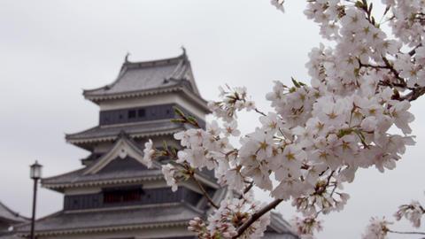 松本城 ビデオ