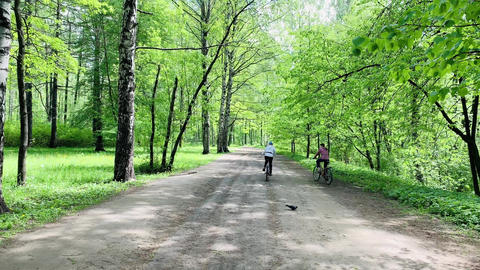 Two cyclists in bright clothes go on a path in the wood, spring in a forest Acción en vivo
