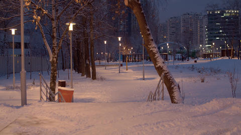 Park covered with fresh snow after a snowfall ライブ動画