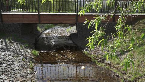 A small creek fortified and bridge ライブ動画