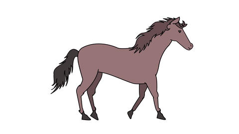 Walking horse Animation