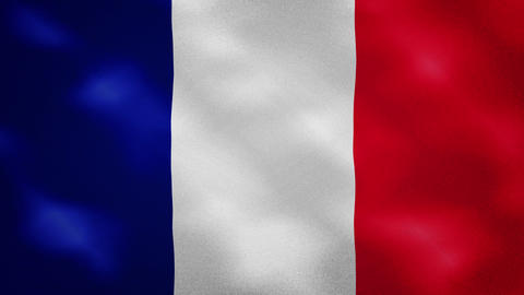 French dense flag fabric wavers, background loop Animation