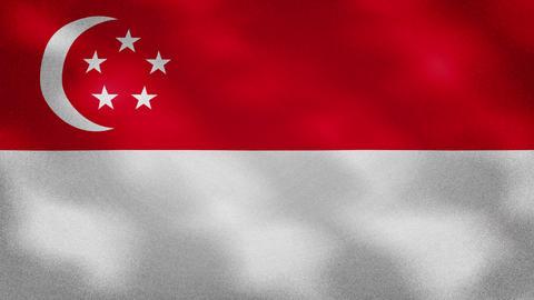 Singapore dense flag fabric wavers, background loop Animation