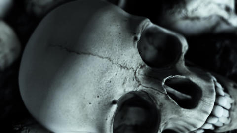 Pile of Human Skulls in a Scary Atmosphere Live Action