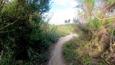 Riding mountain bike in a small singletrack trail in the mountain Live Action