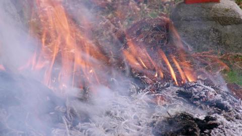 Fire takibi V1-0006 Footage