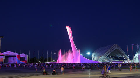 The main Olympic torch, Night. Sochi, Russia Footage