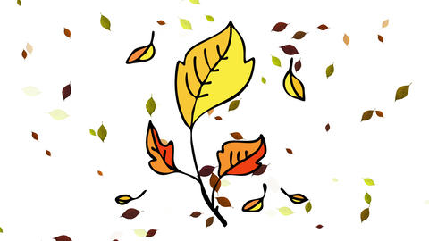 beautiful scenic view of autumn leaves falling outdoors on fall season at a deep forest with Animation