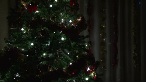 Christmas tree in living room Footage