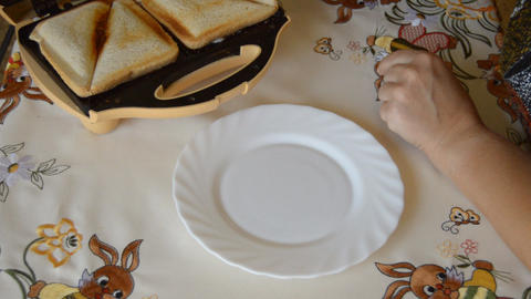 Hot Sandwich 1