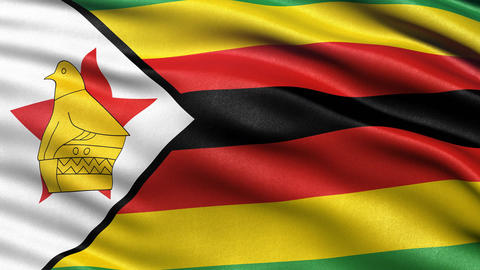 Zimbabwe flag seamless loop Animation