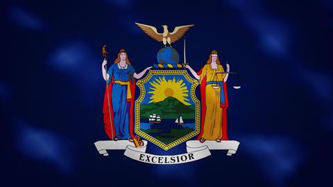 New York dense flag fabric wavers, background loop Animation