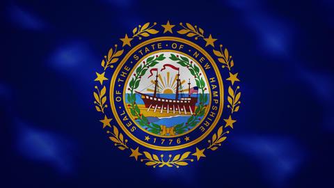 New Hampshire dense flag fabric wavers, background loop Animation