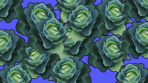 キャベツのトランジション2 Cabbage all2 CG動画
