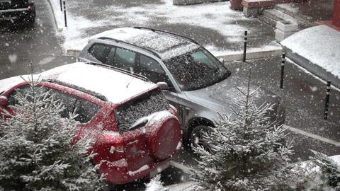 Snowfall, large snowflakes Footage