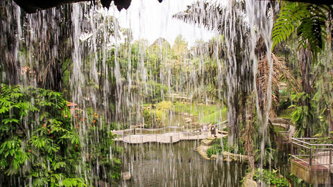 Water Drops Streams Flow as Wall for Heavy Shower Footage