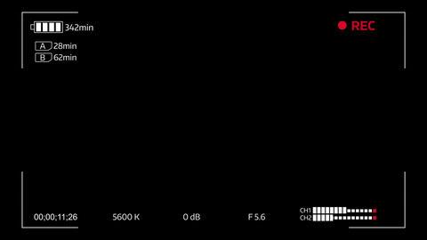 Camera viewfinder digital overlay display - 4k. Luma matte included Animation