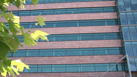 Office building establishing shot Footage
