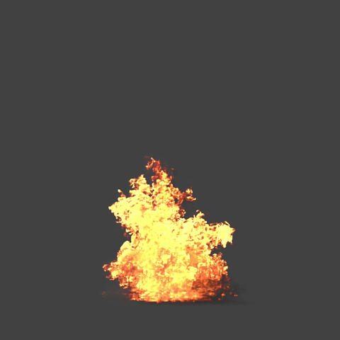 Bomb 1 ライブ動画