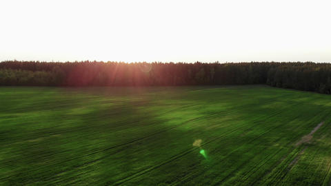 flying over beautiful country side landscape with green field, on sunset, aerial Live Action