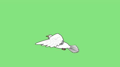 羽ばたく鳩-緑背景 CG動画