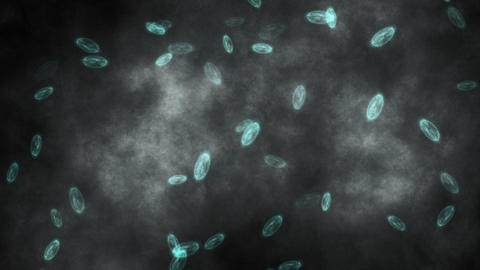 animation - bacteria swimming in pond water Animation