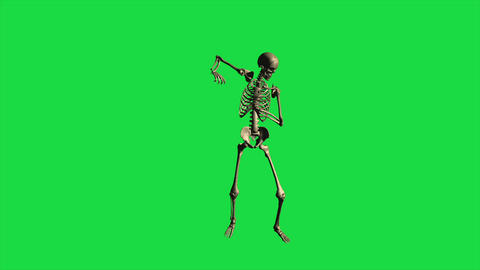 3d animation of skeleton bayonet drill - separate on green screen Animation