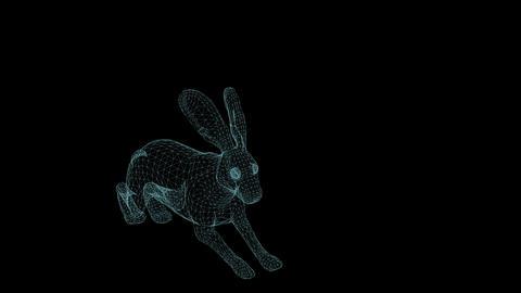 wire frame animation of rabbit running on black background Animation