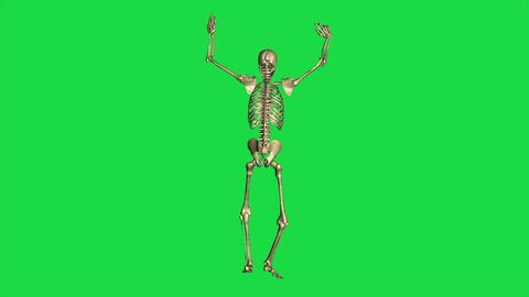 Skeleton Surrender - Separate On Green Screen Animation