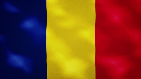 Romanian dense flag fabric wavers, background loop Animation