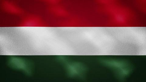 Hungarian dense flag fabric wavers, background loop Animation