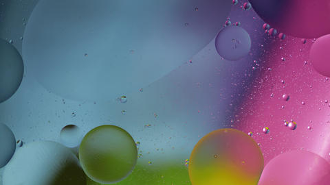 Macro structure of colorful oil bubbles. Chaotic motion. Abstract multicolored Live Action