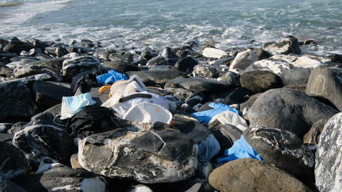 Guy collect Medical waste on sea shore,masks,plastic glove,coronavirus pollution Live Action