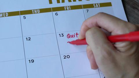 Quit job Live Action