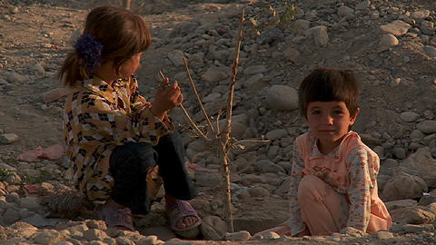 Children play with a dying tree on a hillside in Kabul,... Stock Video Footage