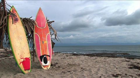 surfboards are propped up against a palm branch structure Footage