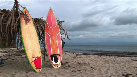 surfboards are propped up against a palm branch structure Stock Video Footage