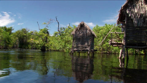 Thatched-roofed homes on stilts stand in a tropical river... Stock Video Footage