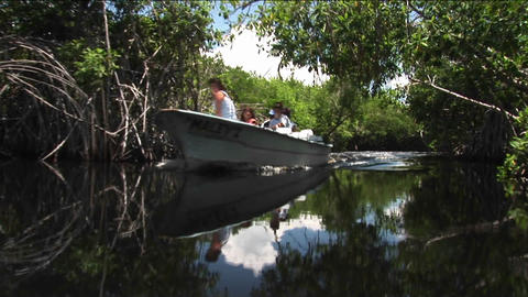 A motor boat glides on a river in a wetland area Stock Video Footage