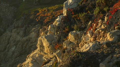 Vertical pan of the rocky Big Sur Coastline in California Stock Video Footage