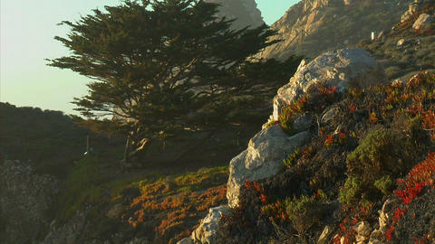 Vertical pan of the rocky Big Sur Coastline in California Stock Video Footage