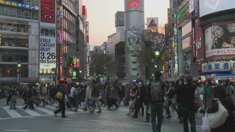Pedestrian crossing during rush hour near Shibuya Station, Tokyo, Japan Footage