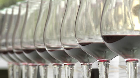 Rack focus on a row of wine glasses Stock Video Footage