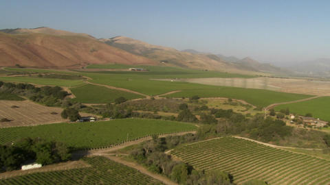 Helicopter aerial of a vineyard in the Santa Maria... Stock Video Footage