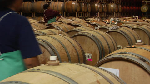 A woman hoses off wine barrels in a Santa Barbara County winery, California Footage