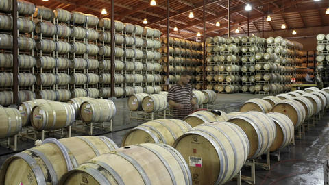 A cellar crew tops off wine barrels during harvest in... Stock Video Footage